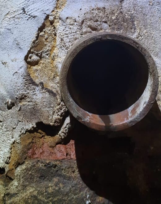 pest drain inspection